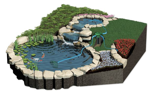 Diagrams of plant filtering pond google search for for Koi pond system