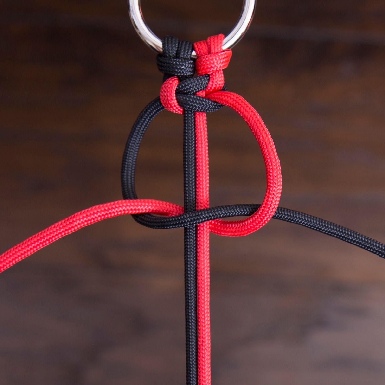 Favorit Solomon, Weberknoten, Survival, Armband, Halsband, Hund, Leine AB98