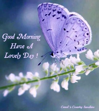 A New Day Is Given To Live Love And Be Loved Good Morning Good