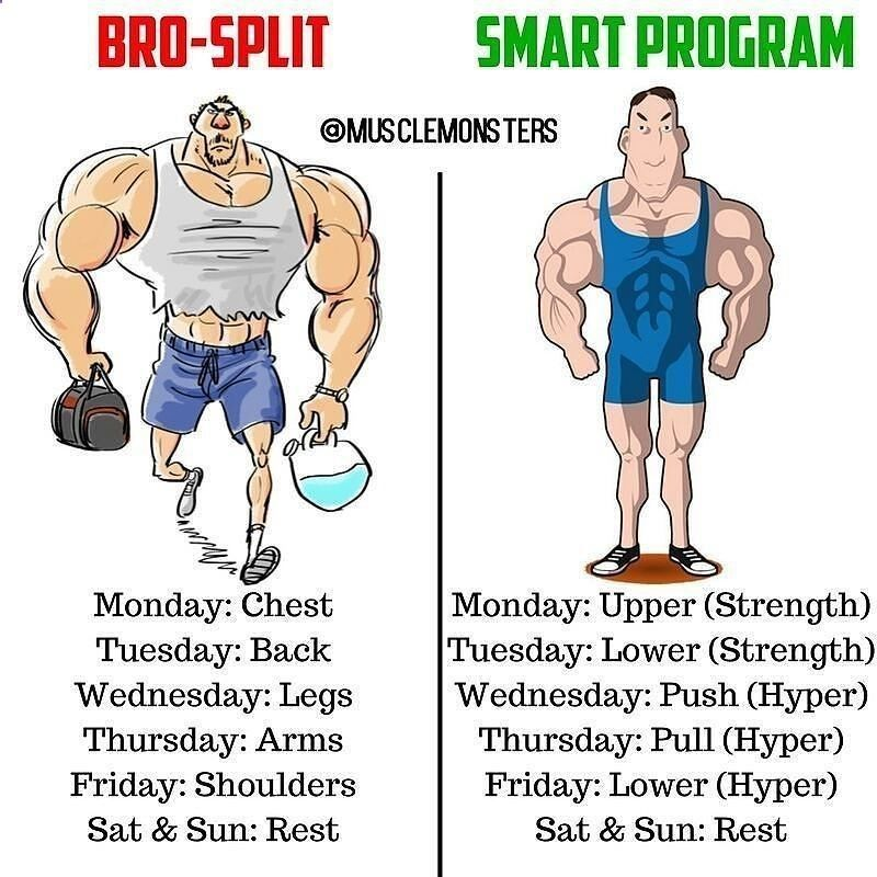 SMART WORKOUT PROGRAMMING BY @musclemonsters _ If youre looking to