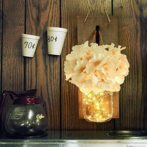 Photo of HABOM Rustic Mason Jar Wall Decor Sconces – Decorative Home Lighted Country House Hanging with LED Fairy Strip Lights and Flowers Hydrangea Farmhouse Sconce Jars (Set of 2)