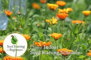 Simple Indoor Seed Starting Schedule | Free Printable