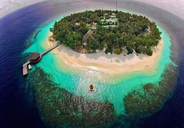 Paradise Island - The Maldives