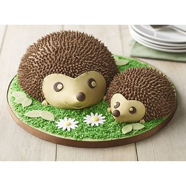 Photo of round hedgehog cake – Google Search