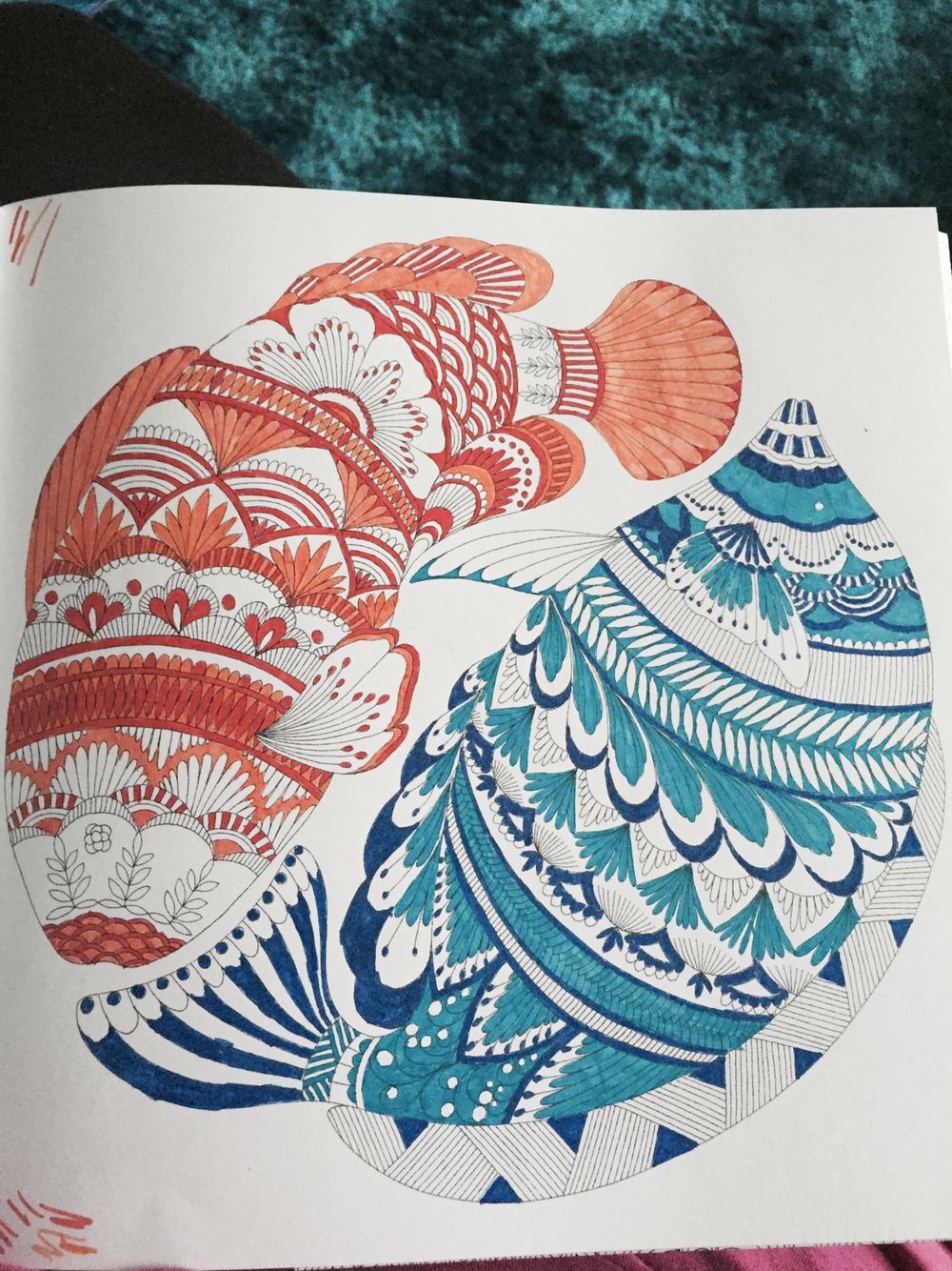 Fish From Millie Marotta S Animal Kingdom Colouring Book Animal Kingdom Colouring Book Millie Marotta Animal Kingdom Millie Marotta Coloring Book