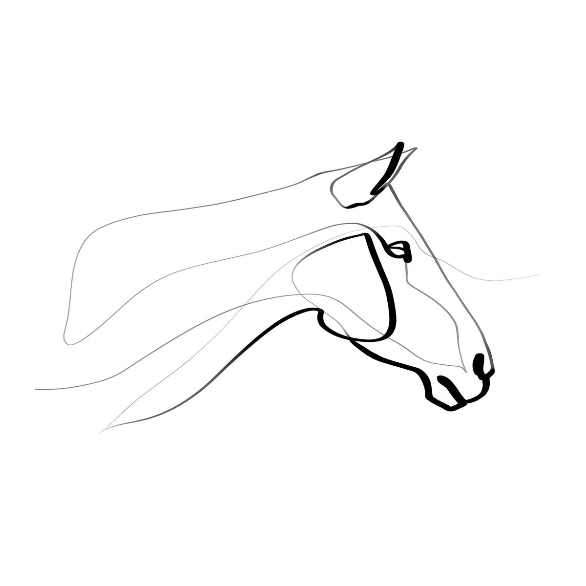 Equine with one line part i on behance horse tattoo