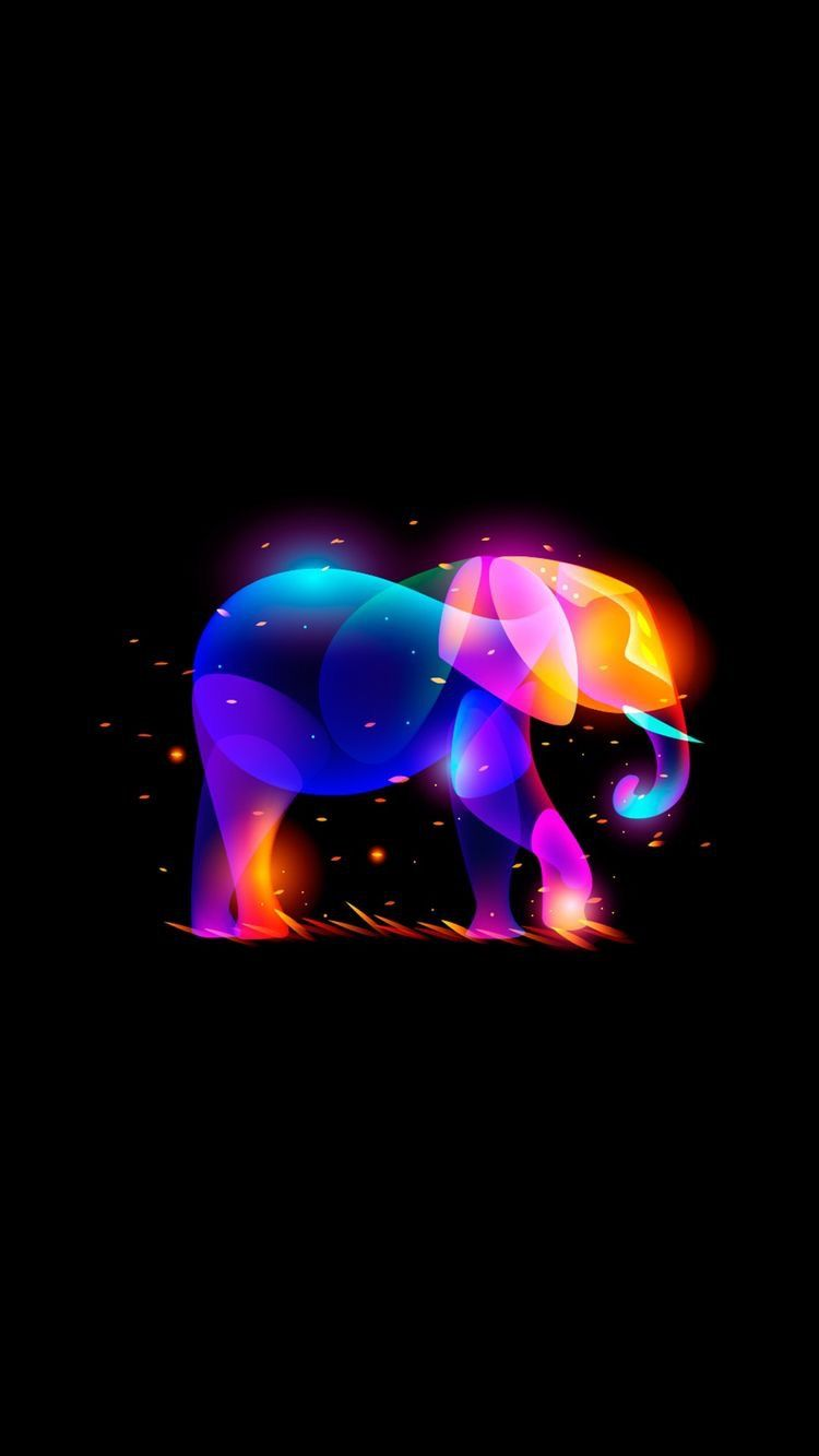 Pin By Kilay On Wallpapers Elephant Phone Wallpaper Elephant