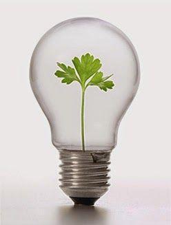Different Green Energy Sources? http://eco-friendlyhouses.blogspot.com