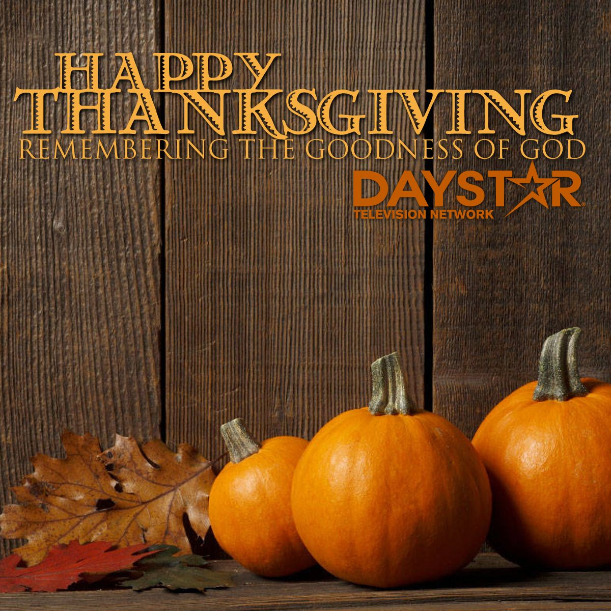 Happy Thanksgiving Daystar Com Thanksgiving Wallpaper Thanksgiving Background Thanksgiving Facebook Covers