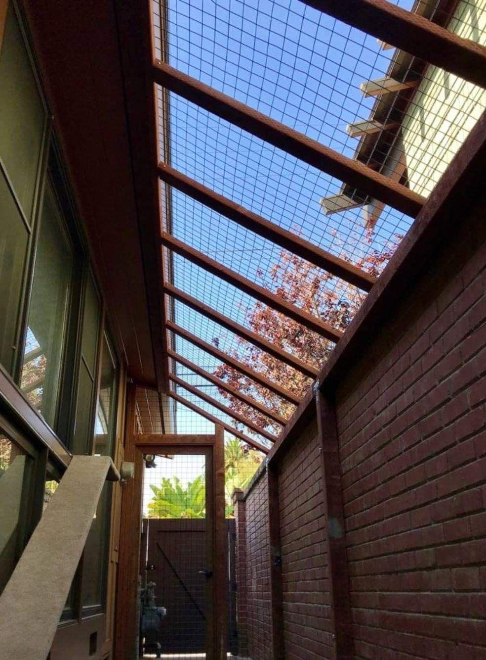 Pin By Crystal Bailon On Dogs Cat Patio Diy Cat Enclosure Outdoor Cat Enclosure