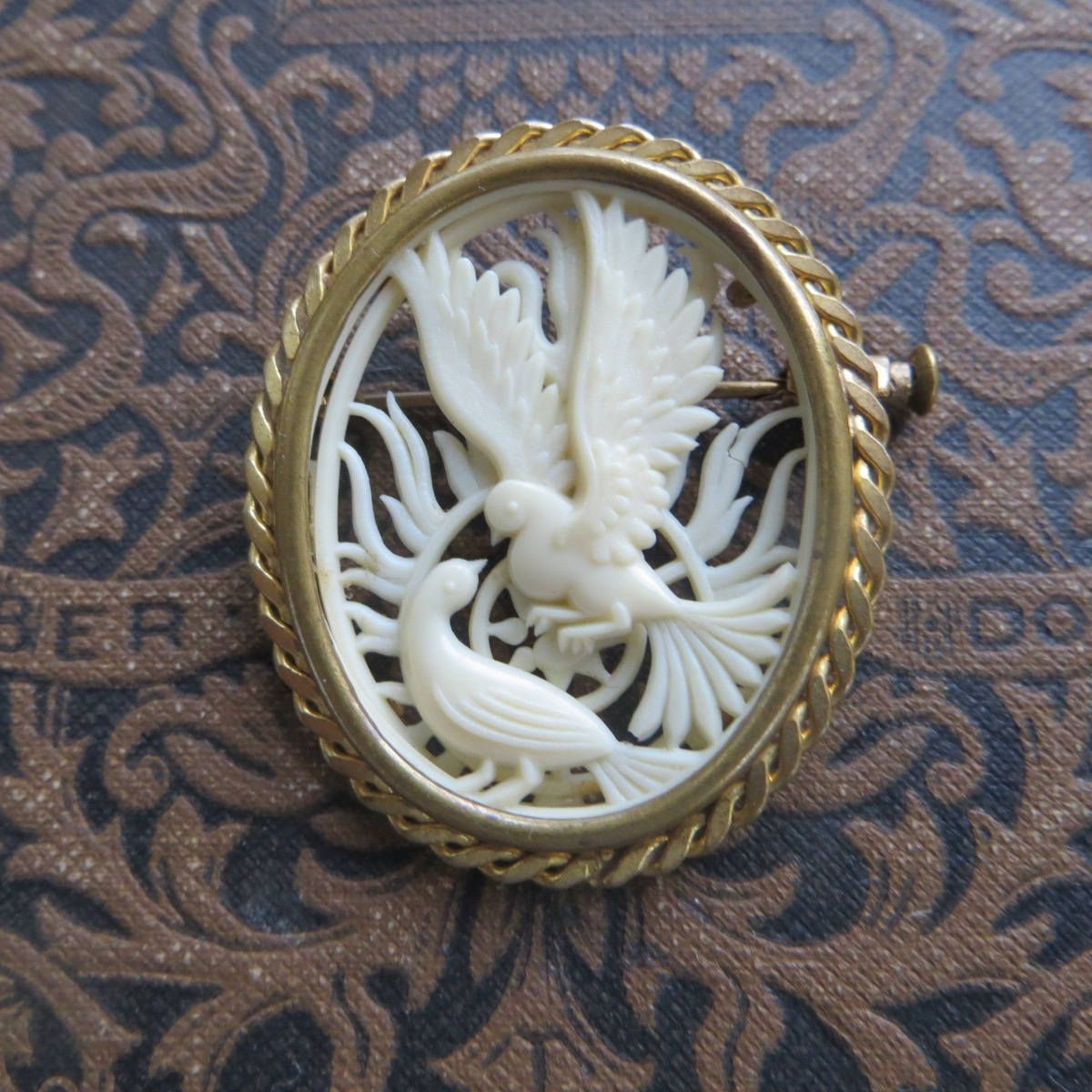 2ceb93ff23b Vintage Carved Celluloid Pin, Pair of Doves Brooch, Depose France Bird  Brooch, Vintage Bird Jewelry #carvedcelluloidbrooch #dovebrooch #dovepin ...