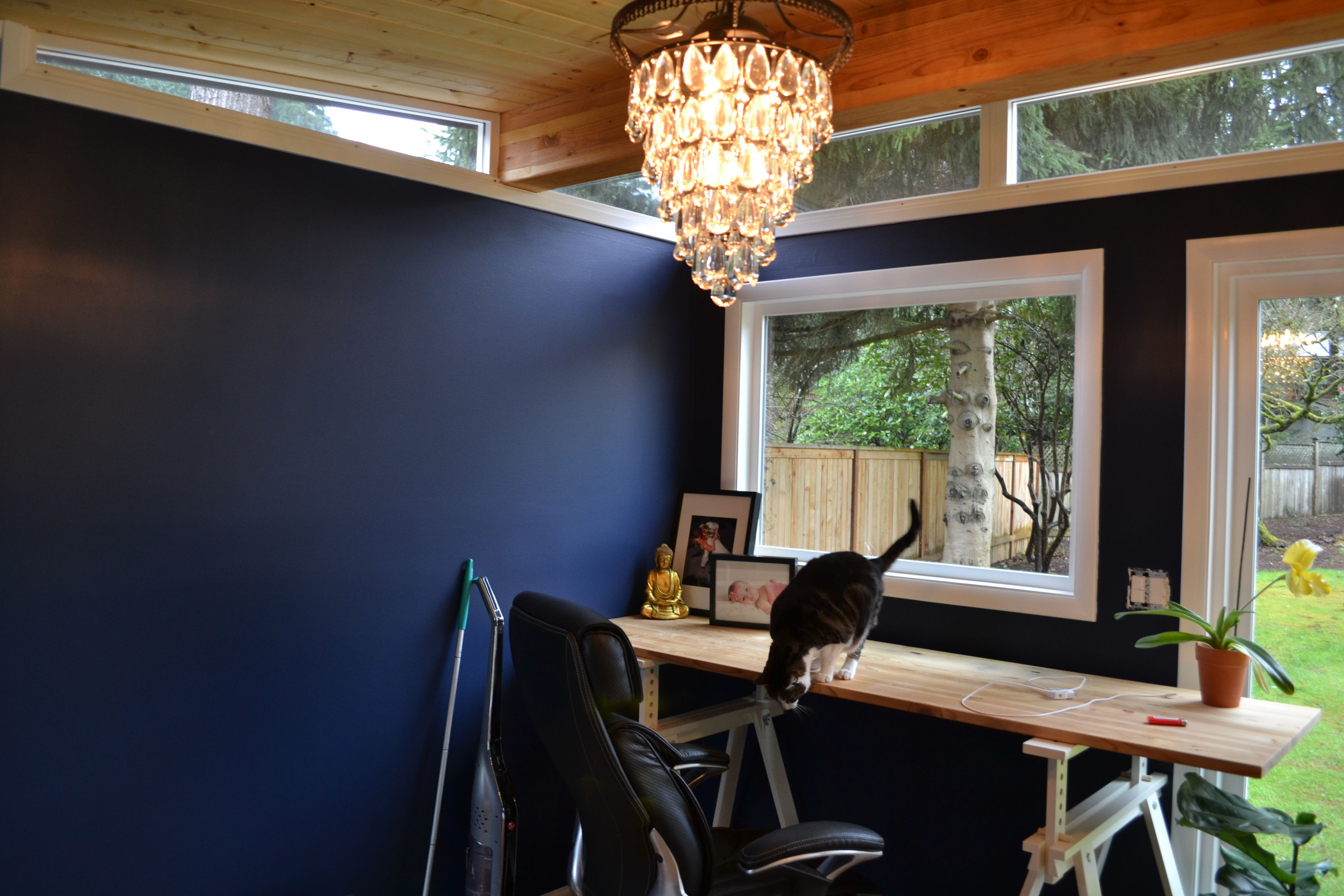 What better way to work from home than with a ModernShed home