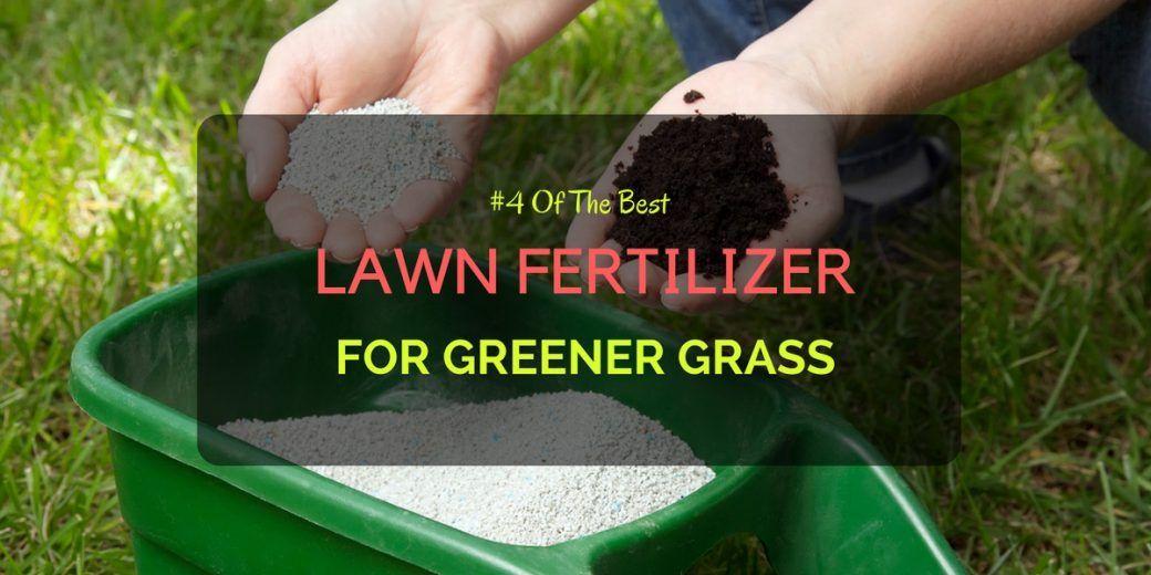 Best Lawn Fertilizer >> 4 Of The Best Lawn Fertilizer For Greener Grass Lawn