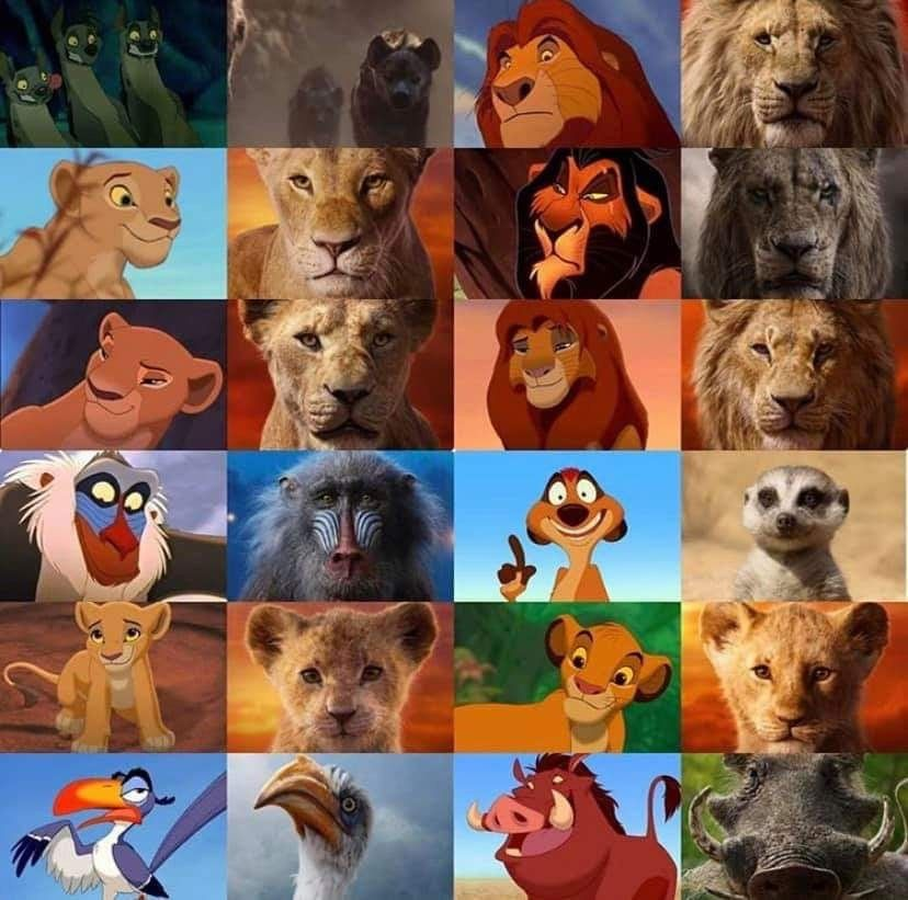 The Lion King Characters Then 1993 And Now 2019 Lion King Drawings Lion King Pictures Lion King Art