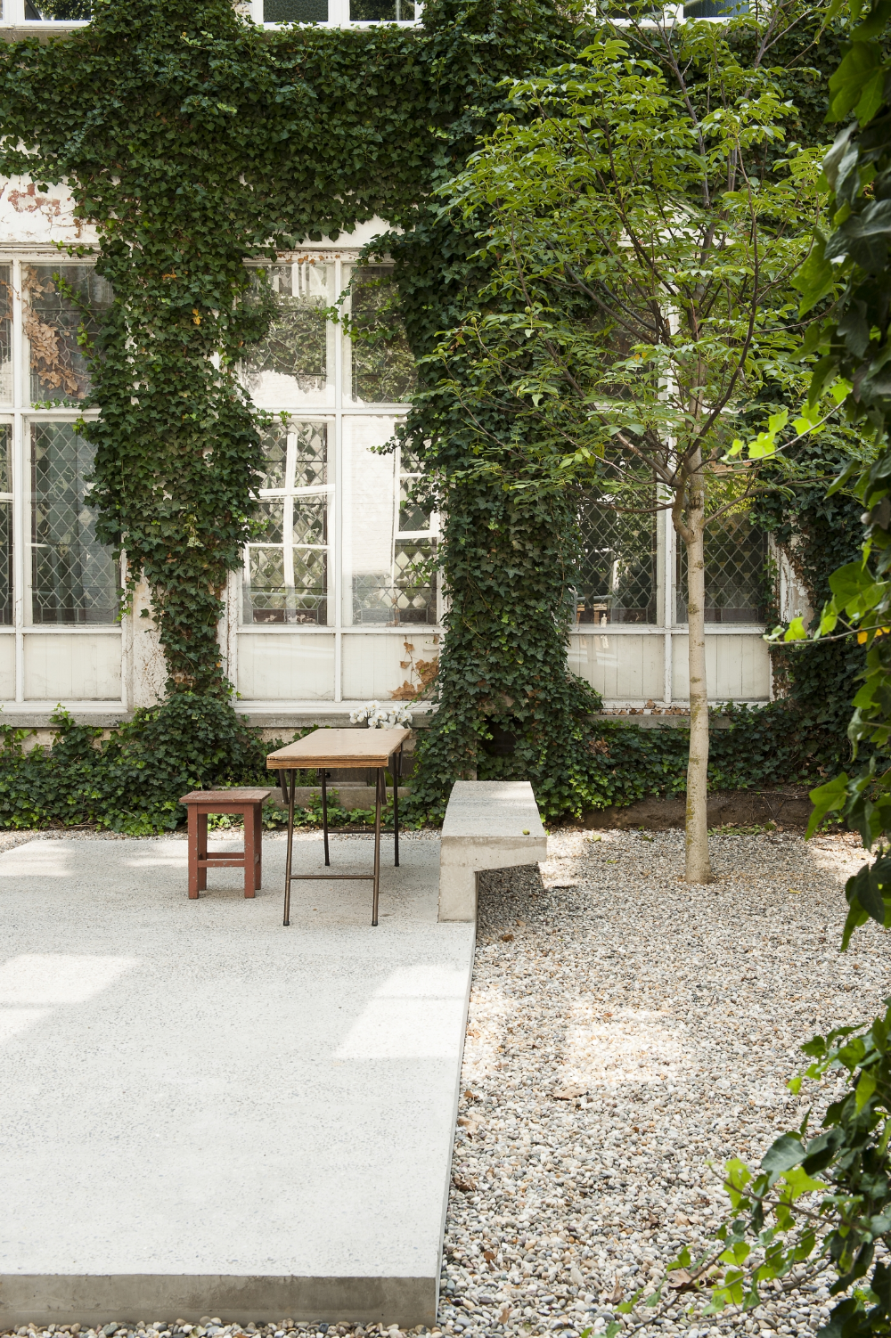 Steal This Look An Artful Gravel Garden in Antwerp is part of Gravel garden, City garden, Urban garden, Backyard landscaping, Patio garden, Garden inspiration - One of our favorite gravel gardens is also one of the most simple  The courtyard in the Antwerp galleryhome of gallerist Veerle Wenes designed by Lens°Ass