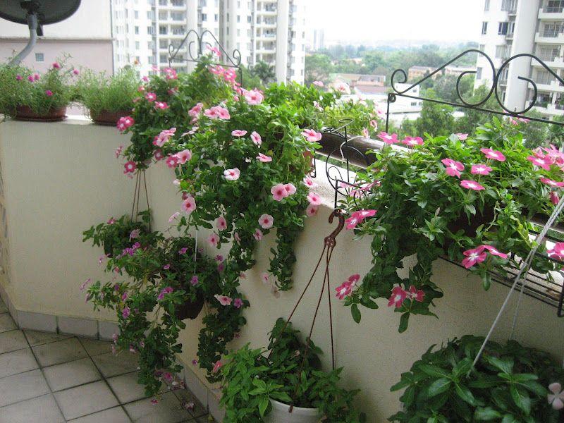 Gardening Ideas For A Patio Upgrade. Balcony Container Gardening Ideas   Best Balcony Design Ideas Latest