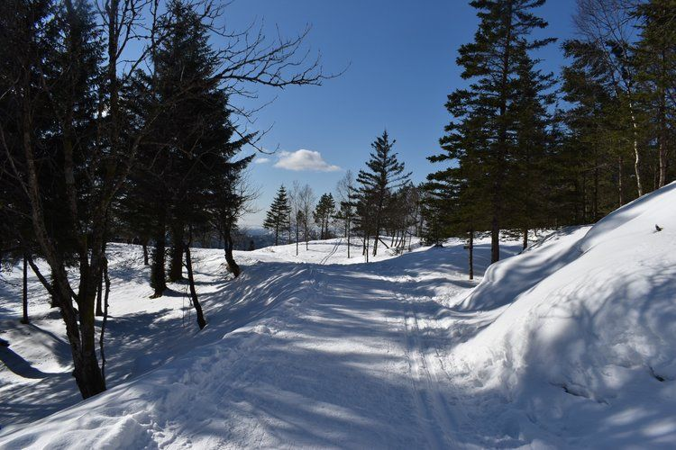 Mount Floyen Winter