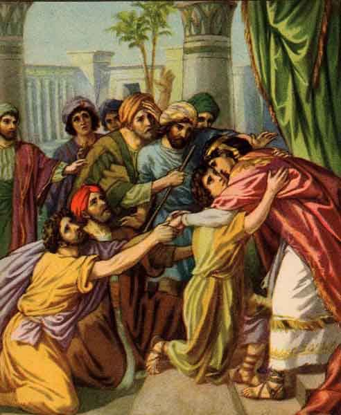 Joseph Forgave His Brothers | Bible, Sons and Bible art