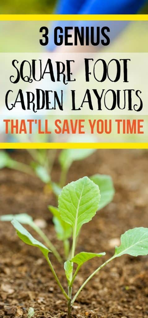 3 Square Foot Gardening Layouts That Are Genius Time Savers is part of Square foot gardening layout, Square foot gardening, Gardening for beginners, Vegetable garden planner, Garden planner, Home vegetable garden - Here's 3 genius square foot gardening layouts that'll save you time and give you a bigger, healthier harvest with half the work