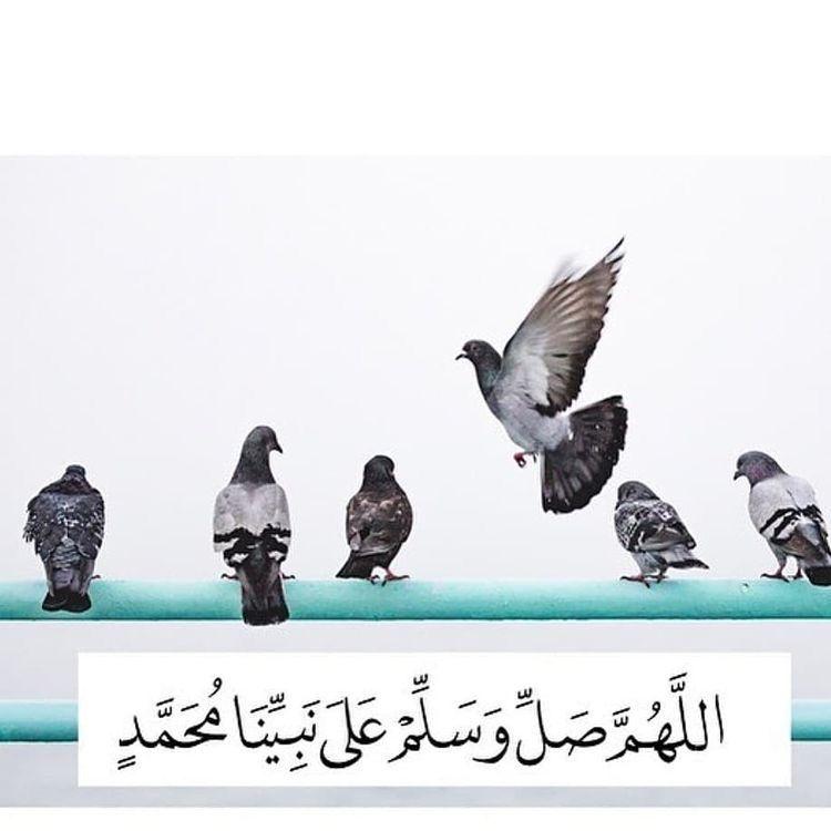 Pin By Fakhruddin Jiwakhan On E 1 Allah Wallpaper Shalawat Allah Calligraphy