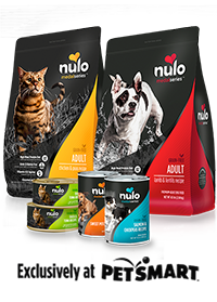 Nulo Medal Series Cured My Dogs Allergies Wow My Dog Missy Dogs
