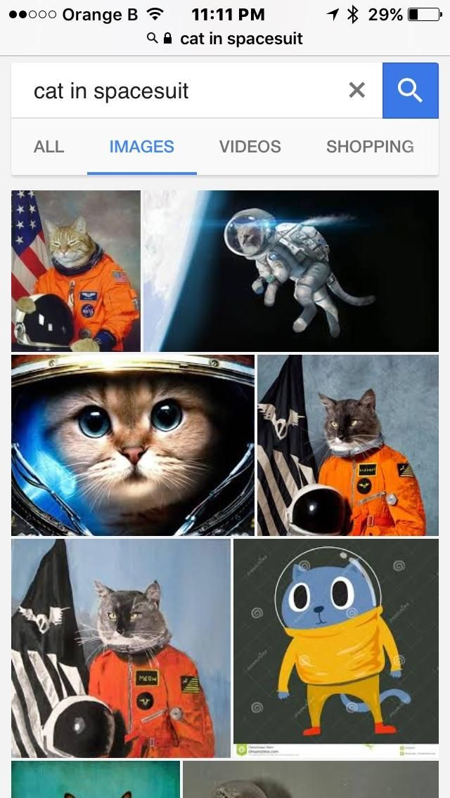 "Searched for ""Cat in Spacesuit"" not disappointed"