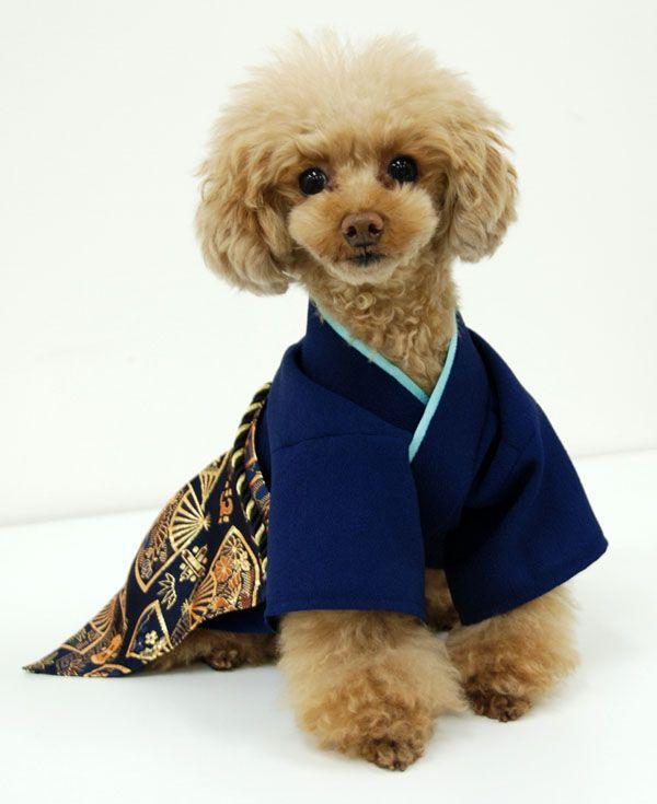 Thousands Of Ideas About Dog Costume Japanese Hakama Kimono On