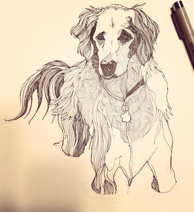 This dog is so much fun to draw!  #dog #petportrait #portrait #wip #inkart #penandpaper #inkandpaper #inkwork #micronpens #fineliner #sketch #commission #art #winnipeg #winnipegartist #winnipegart