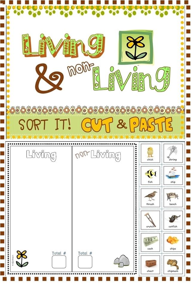 Worksheets to support a miniunit on living and nonliving things – Living and Nonliving Worksheets for Kindergarten