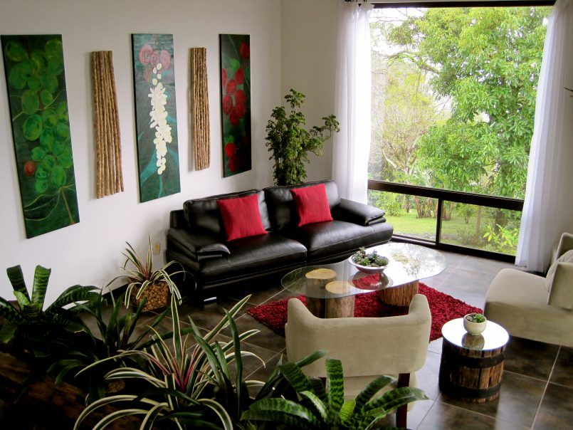 Living Room Black Leather Sofa With Red Sofa Cushion Also Glass Coffee Table And Carpet Be Living Room Plants Decor Living Room Plants Simple Living Room Decor