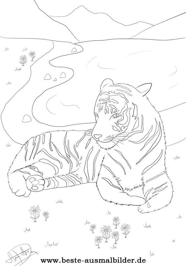 Ausmalbild Tiger Animal Coloring Ausmalen Tiger Und Ausmalbilder