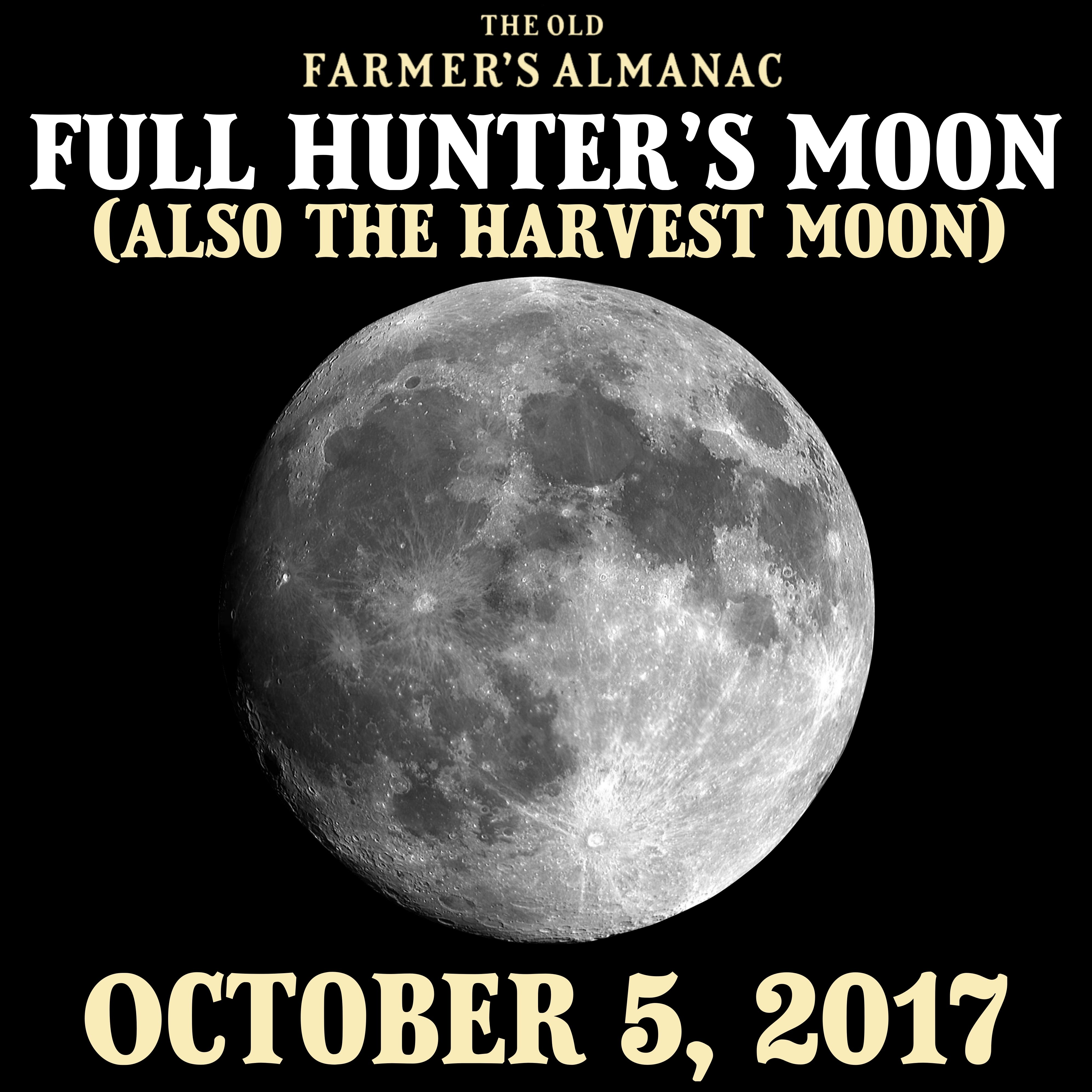 Full Moons For October 2020 Science Jokes Science Humor Science Books