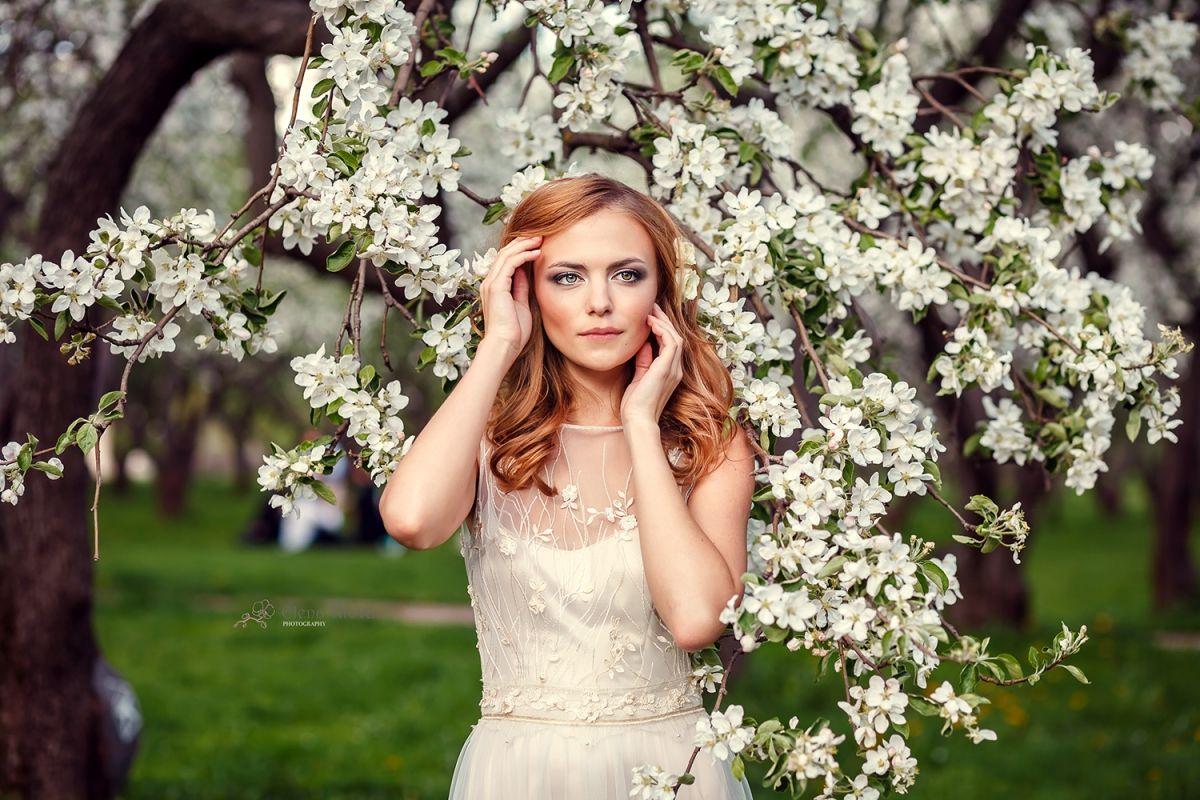 Картинки о цветущий луг ромашки впечатления гардероба