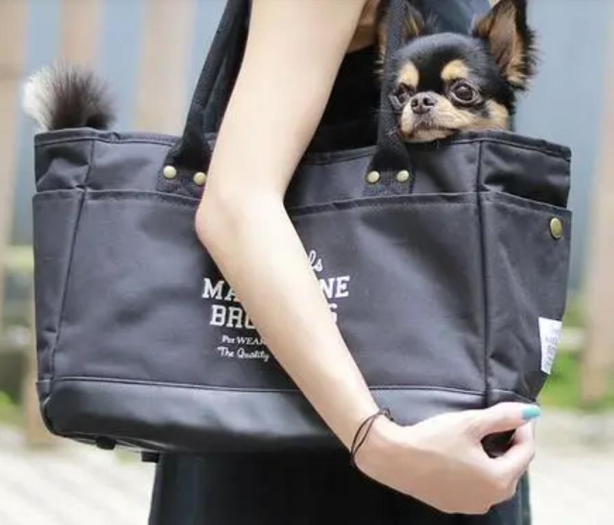 犬のおすすめキャリーバッグ9選 自転車や電車での移動に便利なリュックや おしゃれなトートも 犬 バッグ キャリーバッグ 犬