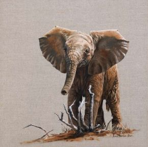 """47. Tsavo Calf II</br>  Oil on Linen </br> 14 x14 inches (35.6 x 35.6 cms) </br> £950.00</br> <strong> <b><span style=""""color:#8b0000;"""">SOLD</span></b></strong>"""