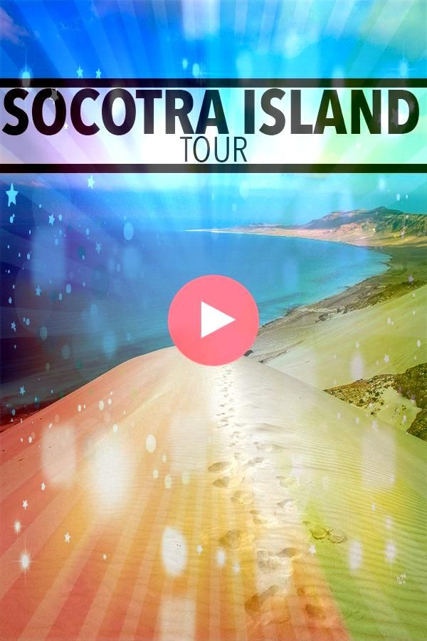 Island Tour  February 2020 Socotra Island Tour  February 2020 Socotra Island Tour  February 2020 Conquering sand dunes for the first time ever one of the many experiences...