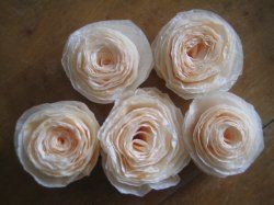 Tutorials and patterns to make flowers out of coffee filters ive tutorials and patterns to make flowers out of coffee filters ive always enjoy paper crafts and have made many tissue paper flowers over the mightylinksfo