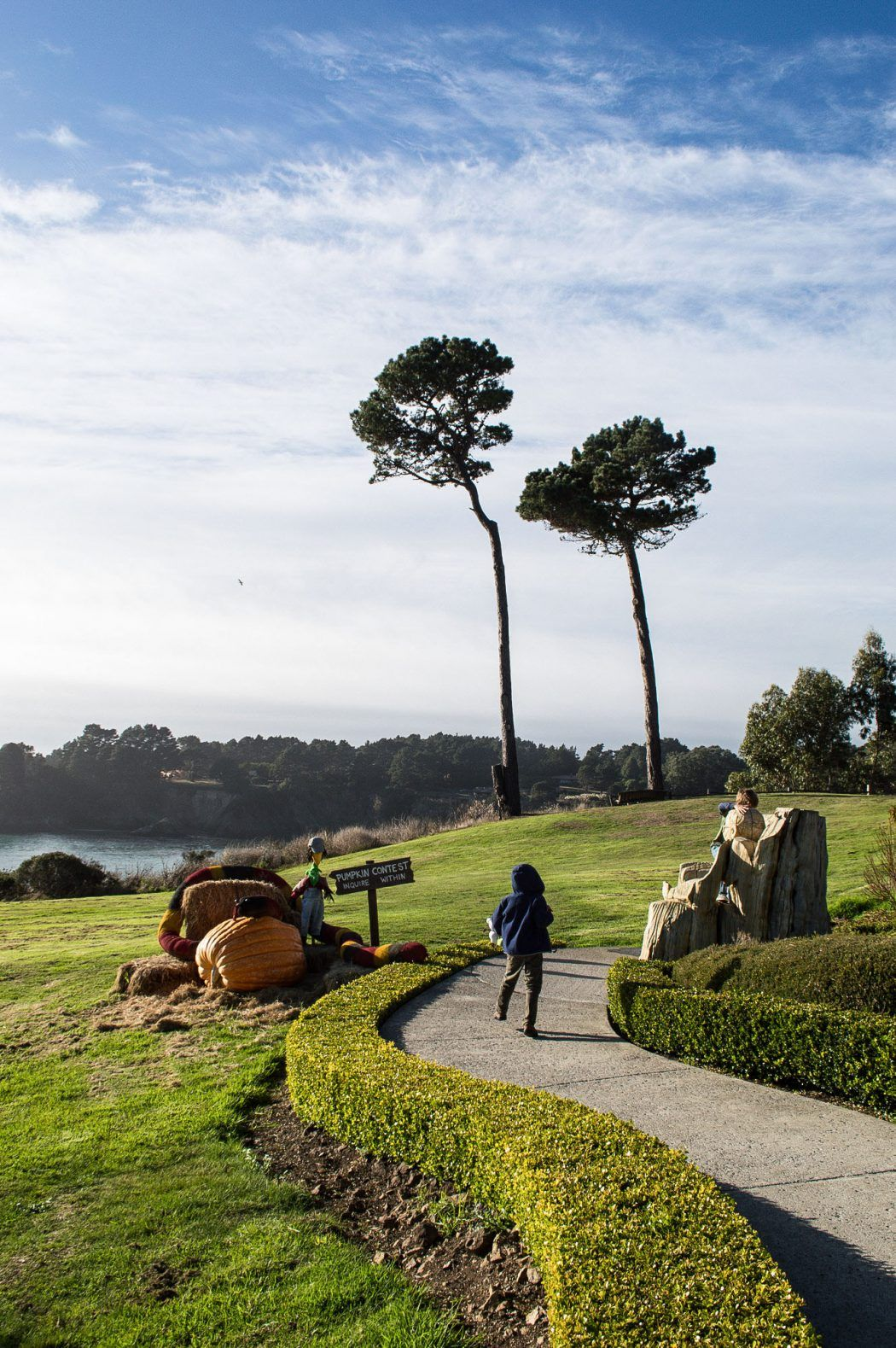 30 Things to Do in/Near Mendocino, Northern California
