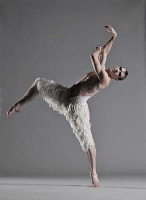 I have seen this. He is a genius. D. Matthew Bourne Swan Lake - Adam Cooper's beauty & genius---would like to see this!