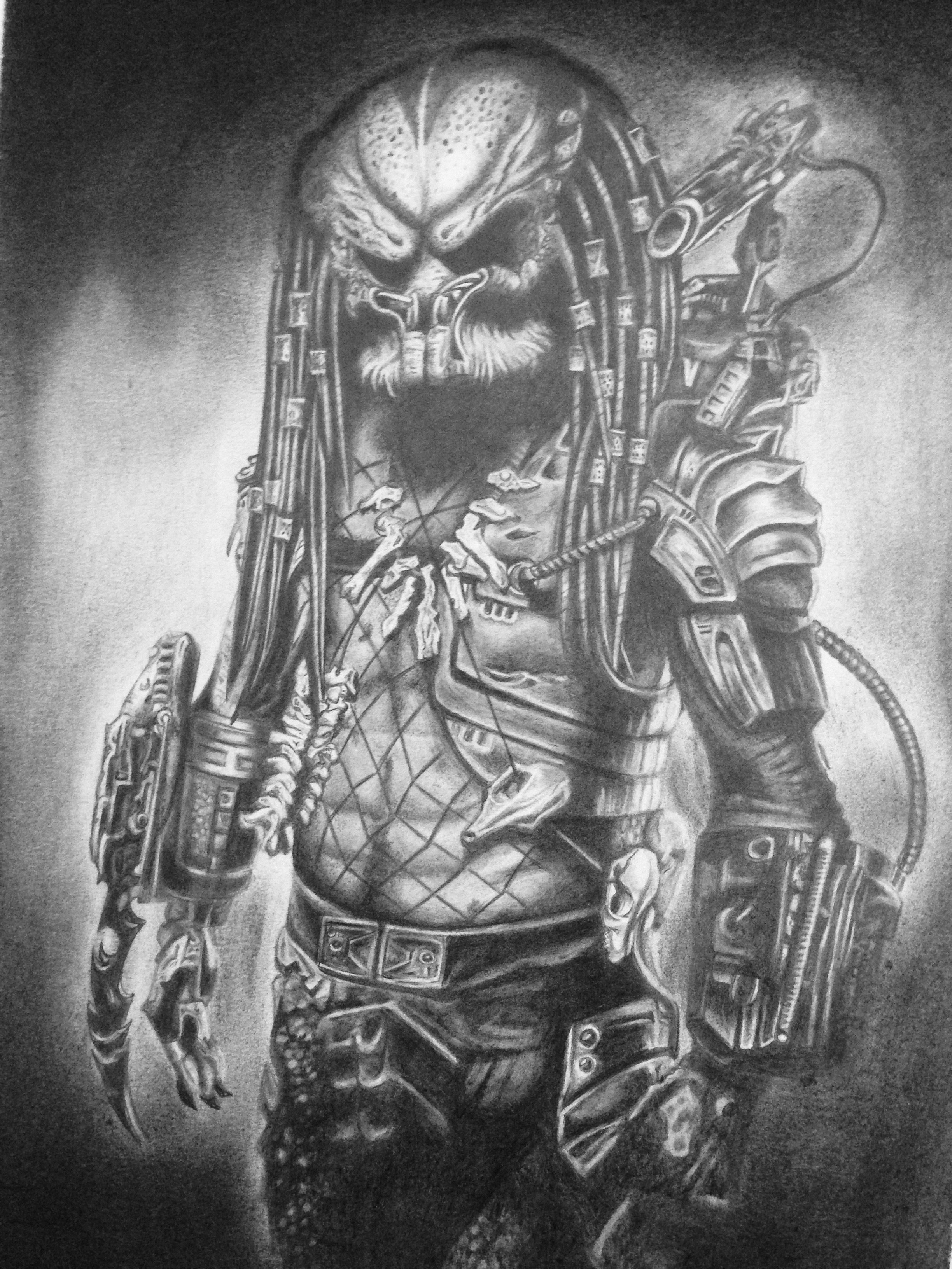Predator pencil drawing www instagram com paul reeve
