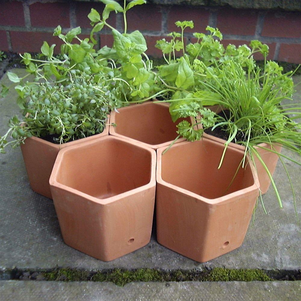 Terracotta Hexagonal Herb Garden Planter Set