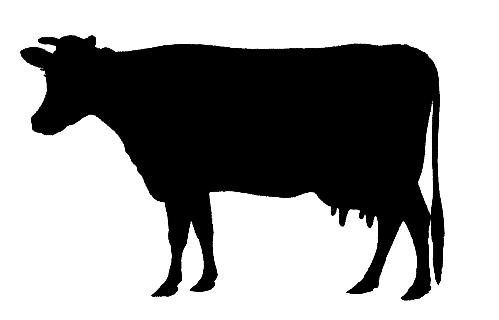 Pin by Rulochampak on good beef | Animal silhouette, Silhouette art, Cow  pictures