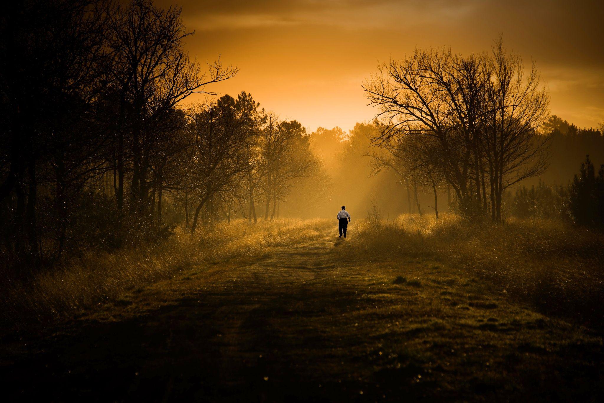 Photo Into The Wild by Sandra Lesvigne 500px
