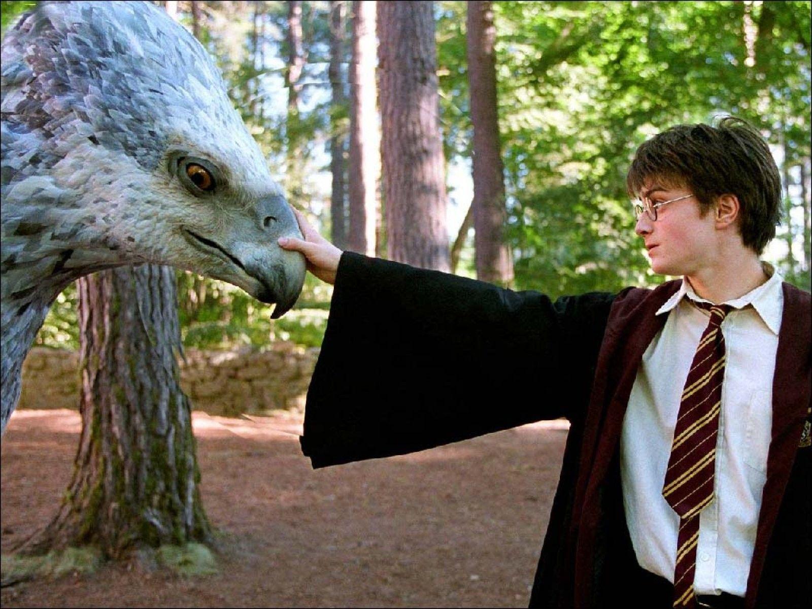 Regresa el universo de Harry Potter al cine