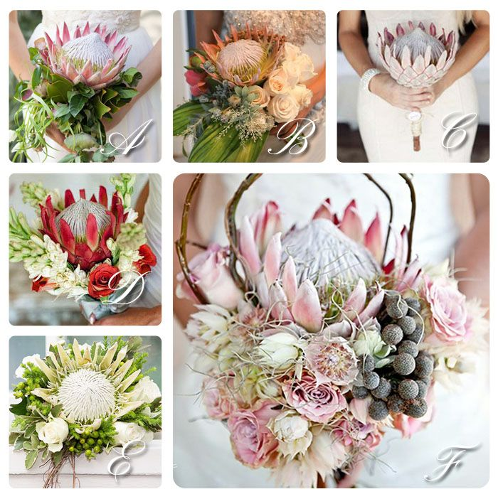 King Protea, bouquet, wedding, red, pink, white