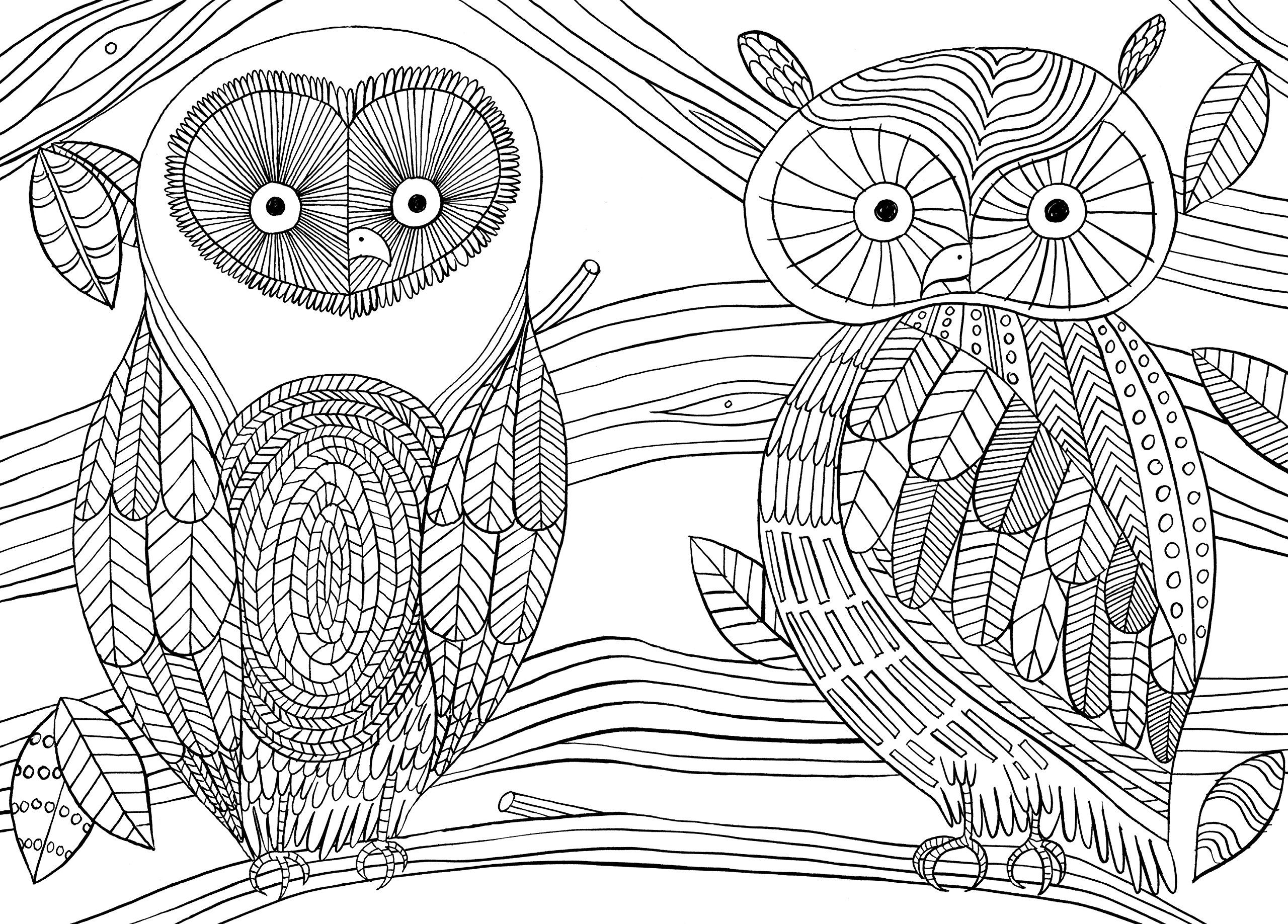 More Mindfulness Colouring Anti Stress Art Therapy For Busy People Amazon Owl Coloring PagesAdult