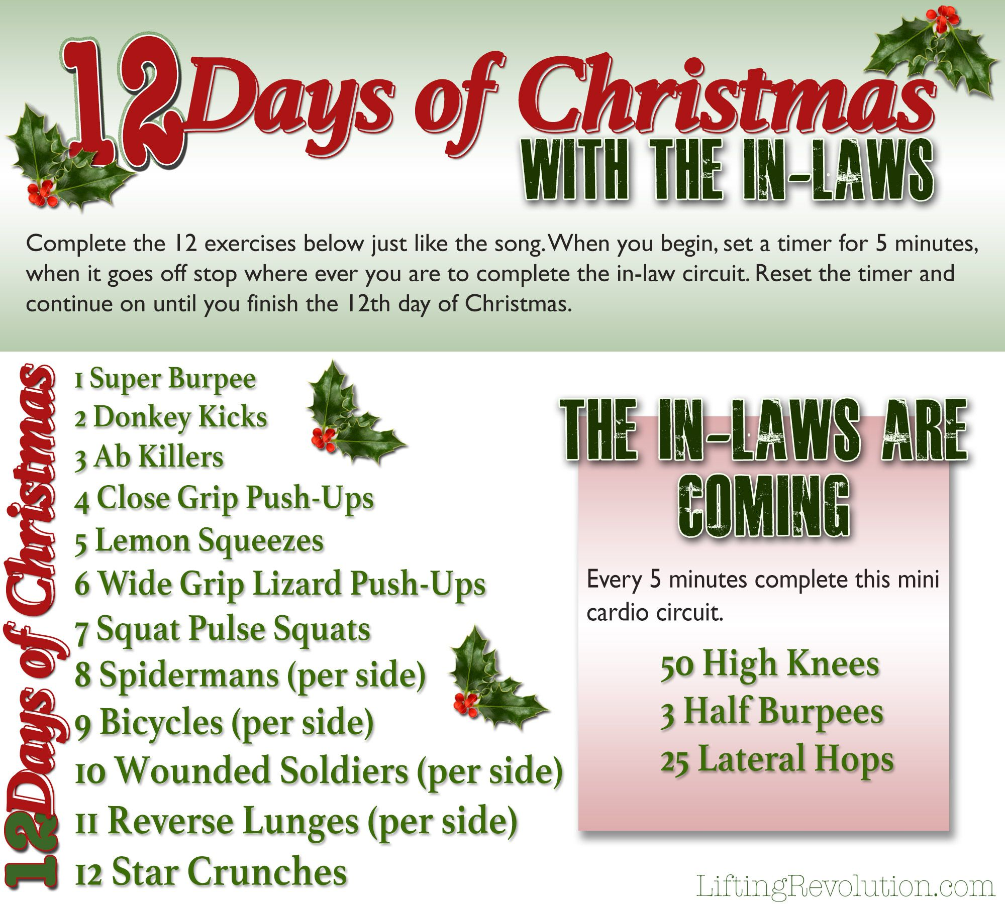 12 Days Of Christmas With The In Laws 12 Days Of Christmas Day 12 Days