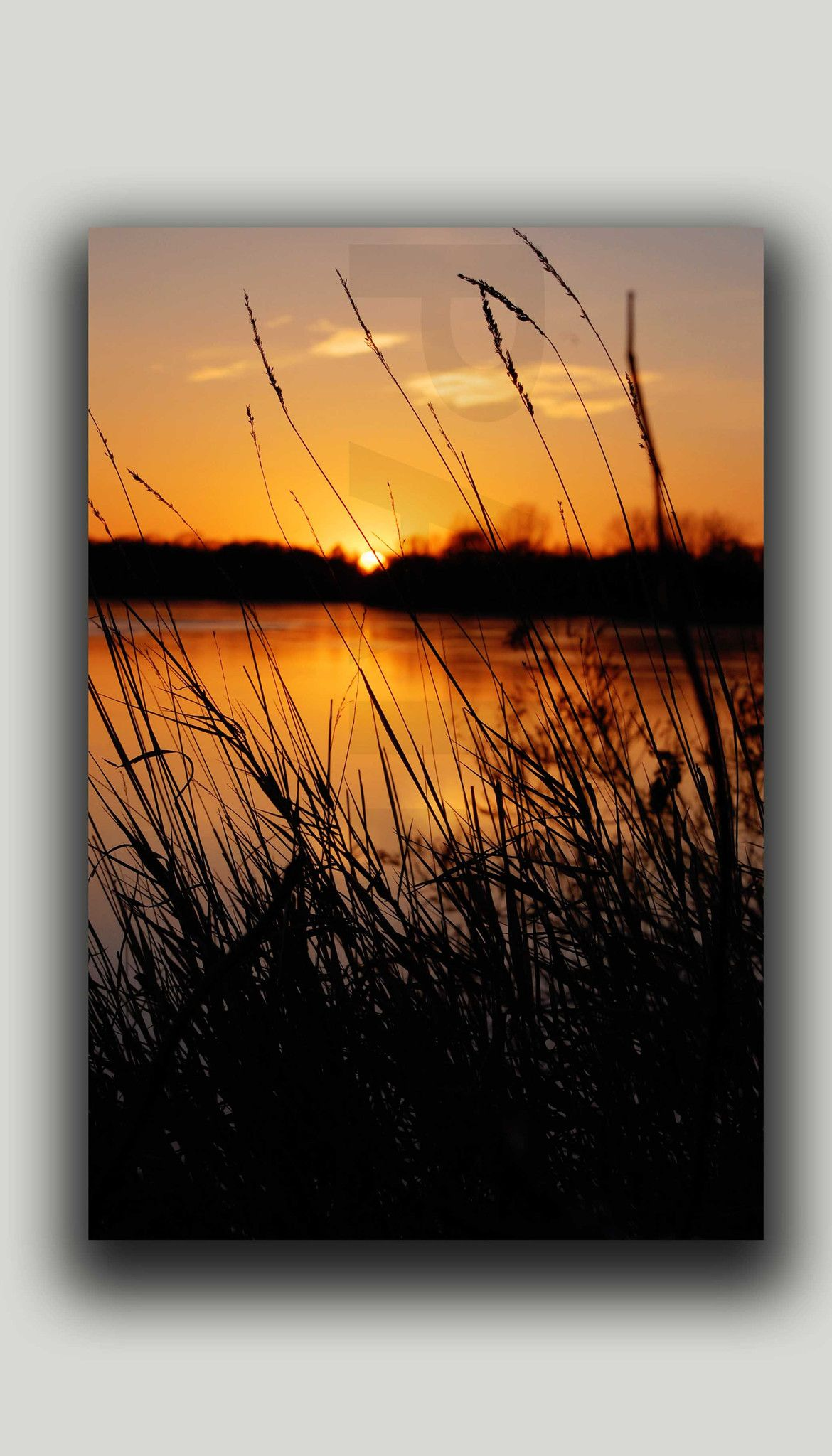 Beautiful Sunset Lakefine Art Canvas By Kristine Leuze