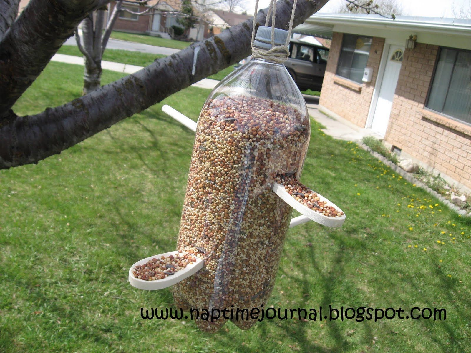 Birds Feeder Bird Feeder Pappy Images