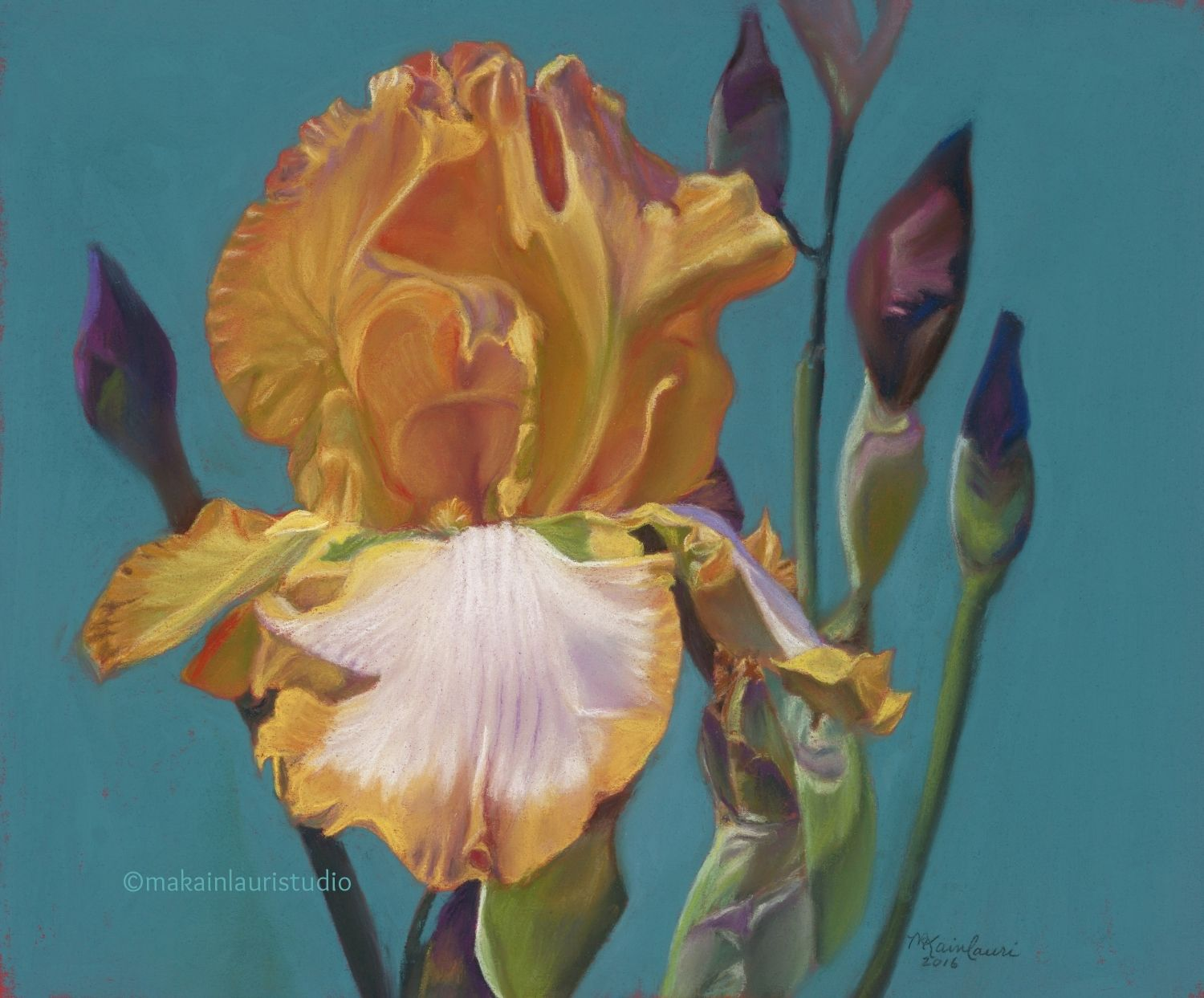 Chasing rainbows in new mexicog iris pastels pinterest this is a gallery of original iris pastels by mary ann kainlauri izmirmasajfo